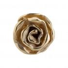 Ring LISA, Silber, col. gold Gr.54