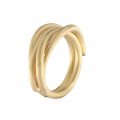 Ring N019G-RI-3, col. gold
